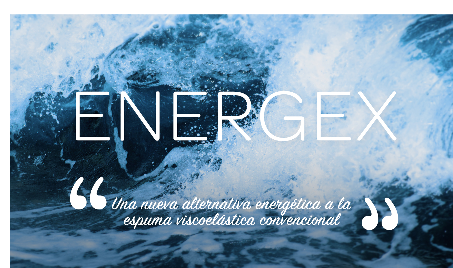 energex.jpg