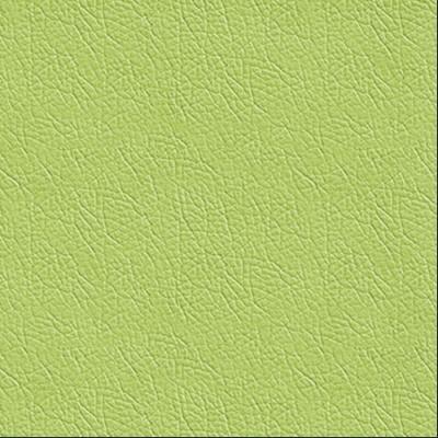 Polipiel Green Verde Pistacho